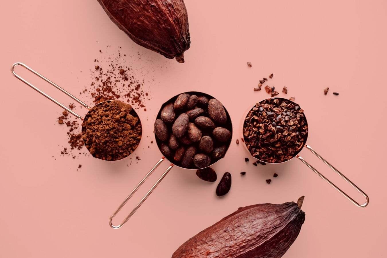 научные факты про шоколад
