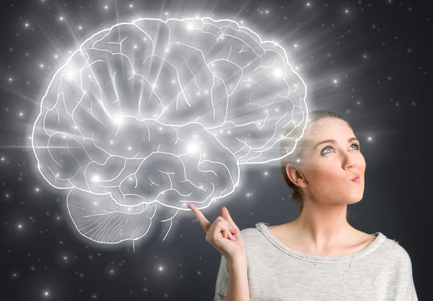 информация и мозг